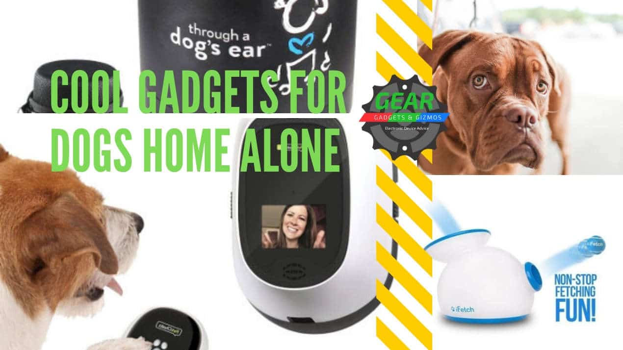 Cool gadgets for dogs home alone
