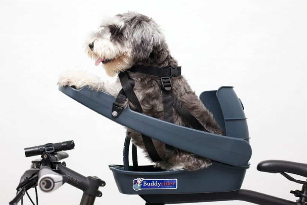 Buddyrider dog seat for e bike
